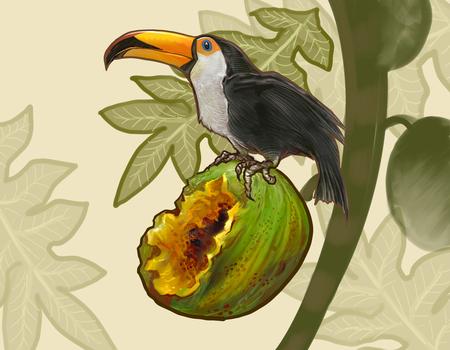 Hornbill bird on a coconut illustration Imagens - 110599837