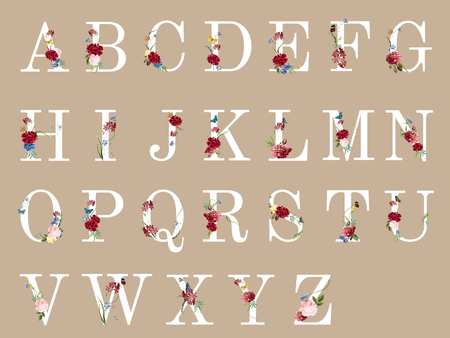 Botanical alphabet with tropical flowers illustration Stock Photo