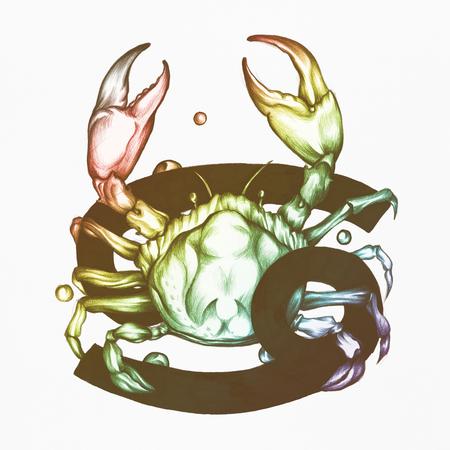 Hand drawn horoscope symbol of Cancer illustration
