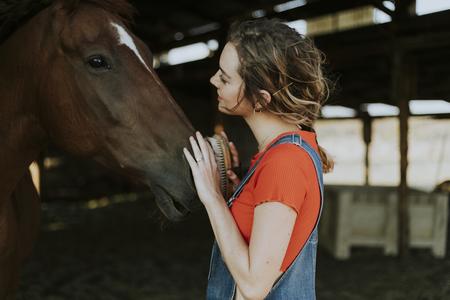 Happy girl grooming a chestnut horse Reklamní fotografie - 112441222