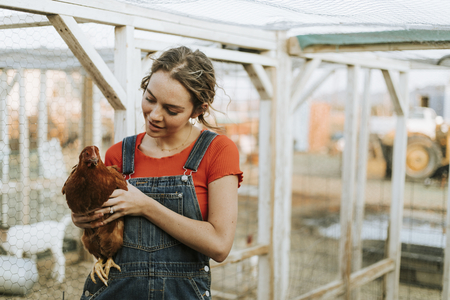 Happy young woman with a brown hen 写真素材 - 112891754