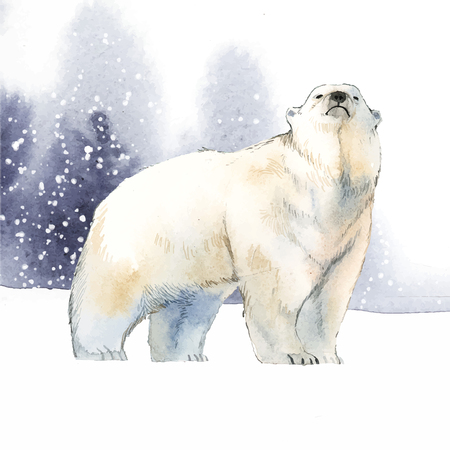 Polar bear illustration Standard-Bild - 117360430