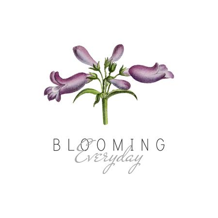 Blooming everyday quote with Broadleaf Penstemon flower vector