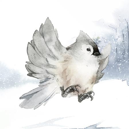 Pájaro carbonero copetudo en vector de acuarela de invierno