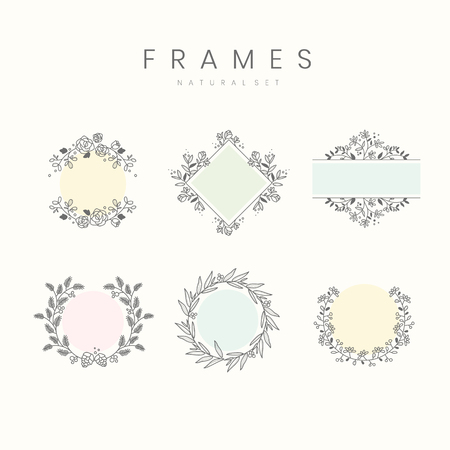 Set of botanical frame design elements vector Illustration