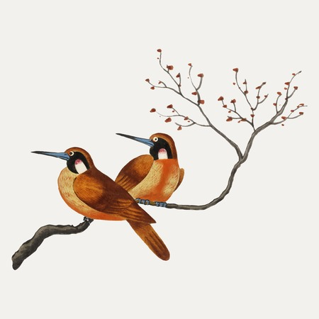 Peinture chinoise représentant deux oiseaux sur une branche d'arbre fleurie. Vecteurs