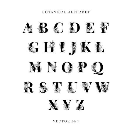 Conjunto de vectores de letras mayúsculas del alfabeto botánico Ilustración de vector