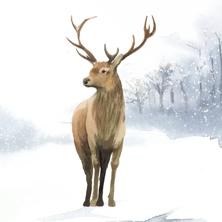 Male deer painted by watercolor vector Standard-Bild - 115280378