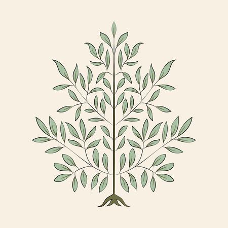 Vintage flourish ornament illustration Banque d'images - 126250850