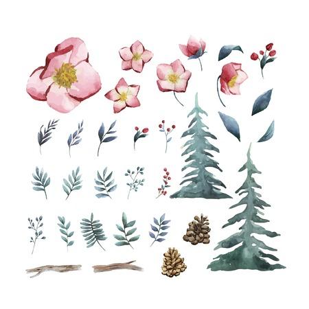 Aquarell-Set von Winterblumen und Blättern Vektor