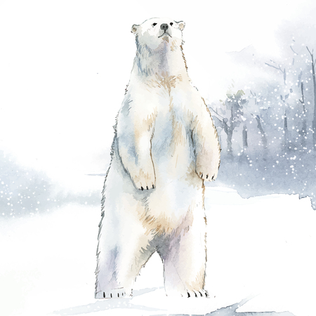 Hand-drawn polar bear in the snow watercolor style vector 向量圖像