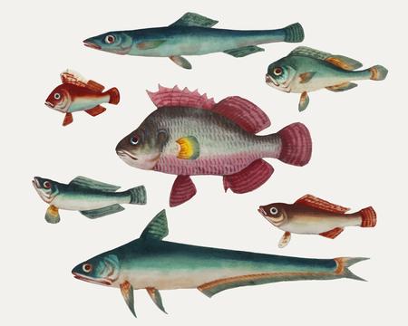 Peinture chinoise représentant un poisson rose, deux poissons verts, deux poissons verts et deux poissons bruns.