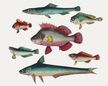 Chinese painting of one pink fish, two green fish, two green fish and two brown fish.