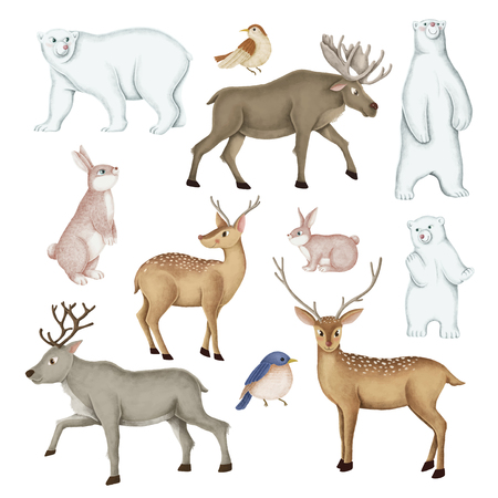 Hand-drawn wild animal set