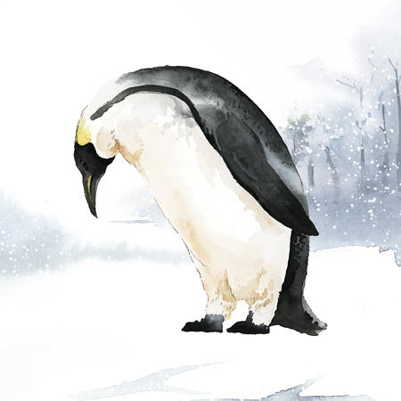 Illustration of a penguin Vectores