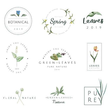 Set of nature and plant logo vectors Zdjęcie Seryjne - 115664029