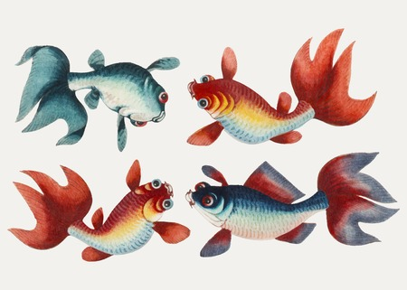 Chinese painting featuring two gold and two silver fish. Illustration