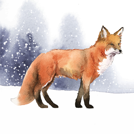 Illustration of a fox in snow Ilustracja