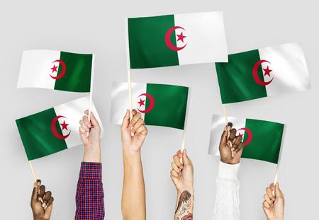 Hands waving flags of Algeria 스톡 콘텐츠 - 115668118