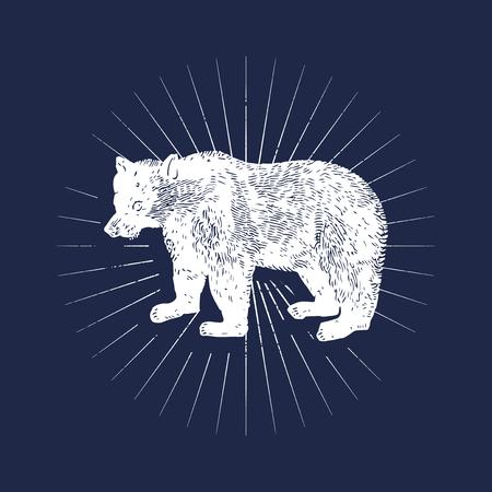 Big bear illustration badge vector