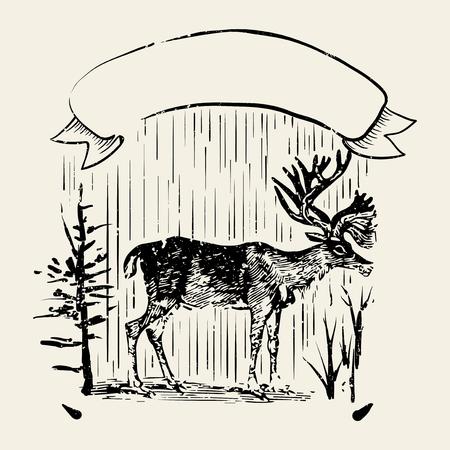 Male deer illustration badge vector Фото со стока - 115859221