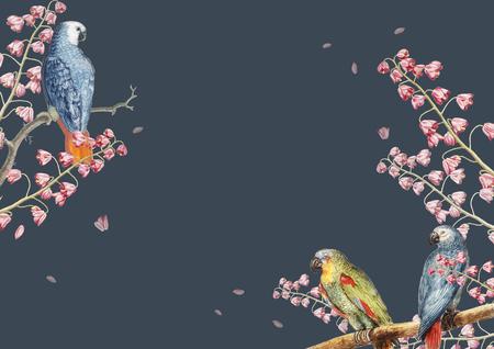 Vintage parrots and nature concept border