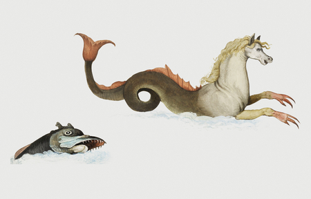 Vintage hippocampus and fish illustration Imagens