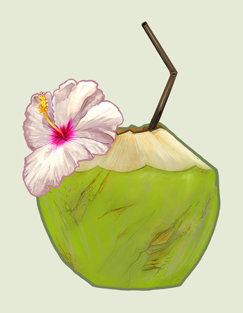 Tropical fresh young coconut illustration Stok Fotoğraf - 115930151