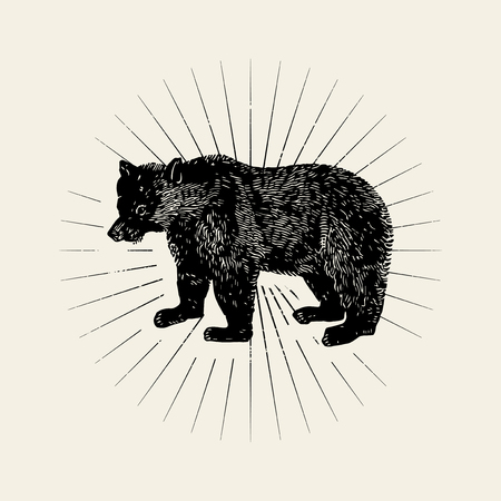 Big bear illustration badge vector Stock Vector - 116525541