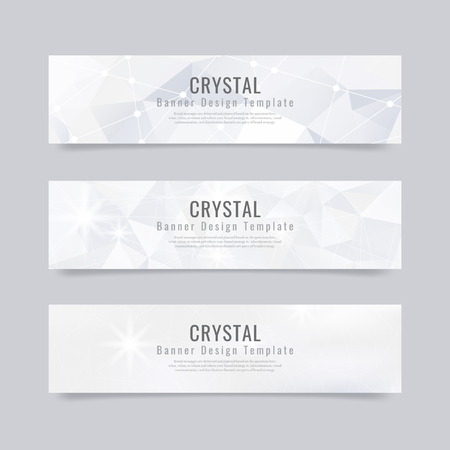 Gray and white crystal textured banner template vector Vector Illustratie