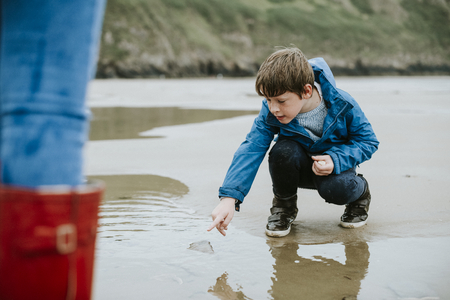 Young boy pointing at a jellyfish on the seashore