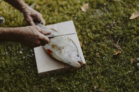 Fisherman holding fish on a cutting board