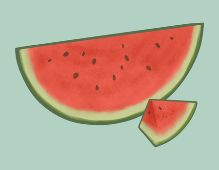 Tropical sliced red watermelon illustration