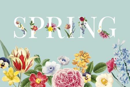 Bunter floraler themenorientierter Hintergrundvektor