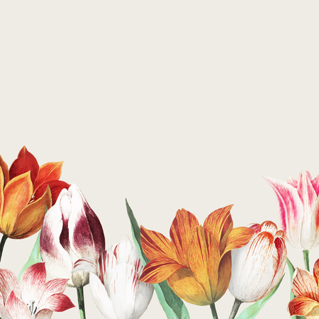 Vintage tulips border decoration and copy space Stock Illustratie