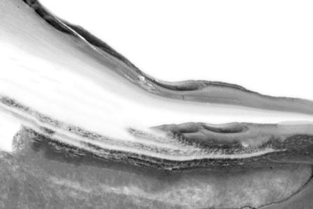 Black and white acrylic painting background