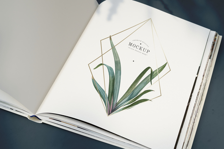 Magazine mockup with leaves and golden frame Stock Photo
