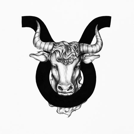 Hand drawn horoscope symbol of Taurus illustration Stock Photo