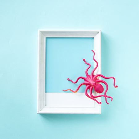 Toy octopus on a frame