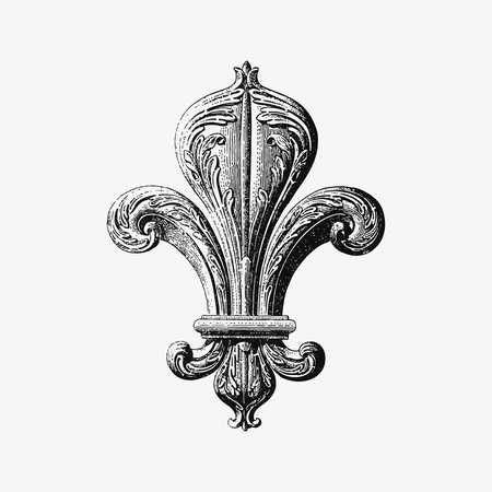 Fleur de lys illustration vector Çizim
