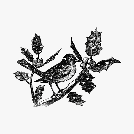 Vintage winter bird etching illustration Stock Illustratie