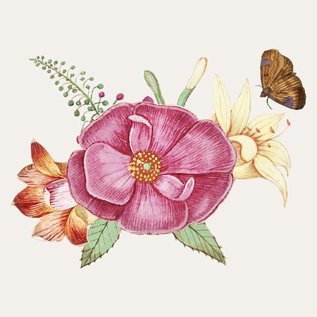 Vintage wild rose flower illustration vector Stock Vector - 125239643