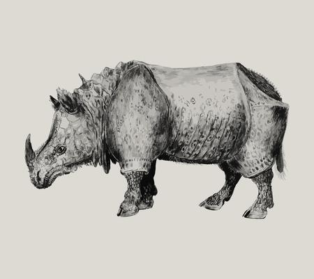 Ilustración de rinoceronte indio vintage en vector Ilustración de vector