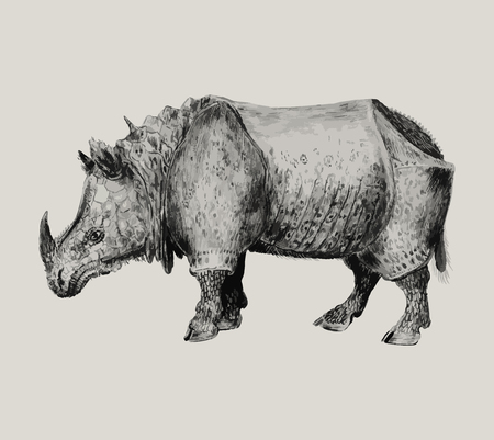 Vintage Indian rhinoceros illustration in vector Vektorové ilustrace