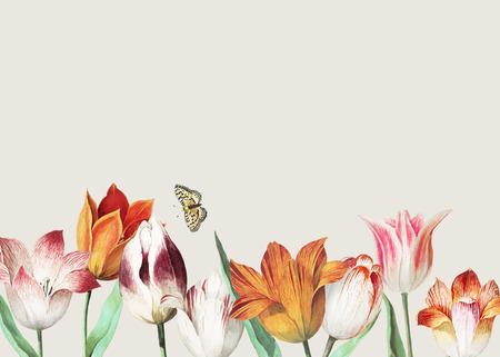 Decoración de borde de tulipanes vintage y espacio de copia Ilustración de vector
