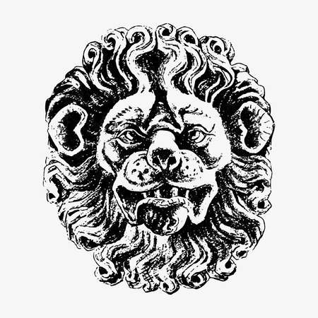 Lion head illustration vector Reklamní fotografie - 116996497