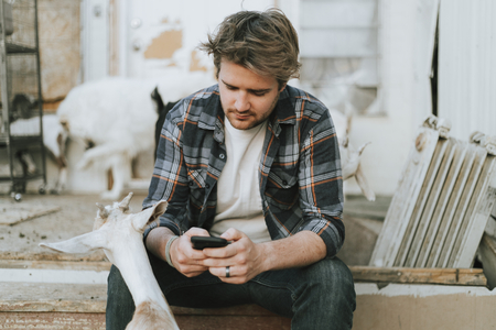 Man texting on his phone at a goat farm Stockfoto