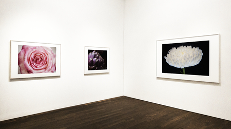 Collection of floral art pieces on the wall 스톡 콘텐츠 - 117111420