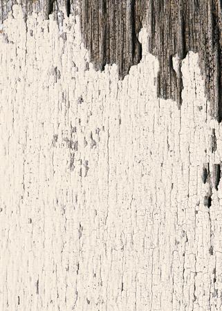 Rustic beige wooden textured flooring background Banco de Imagens