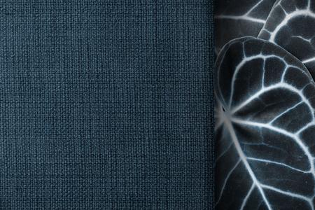 Navy blue matt weave fabric textured background